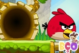 Angry Birds vs Piggies